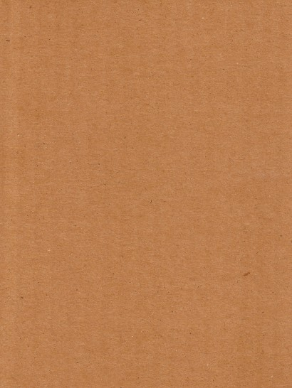 Cardboard_Brown_Paper_Texture_by_Enchantedgal_Stock