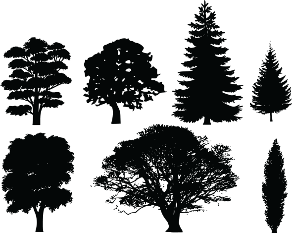 8-Free-Clipart-Of-7-Tree-Silhouettes
